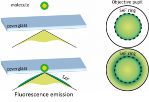 Principle of SAF microscopy