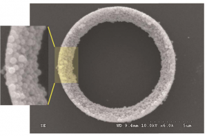 SEM image of a spontaneously-formed ring. the diameter is 10 µm and the thickness is sub-micron.
