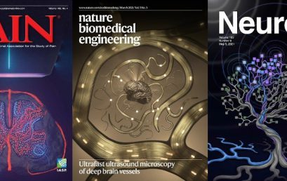 Three cover pages for ultrasound neuroimaging